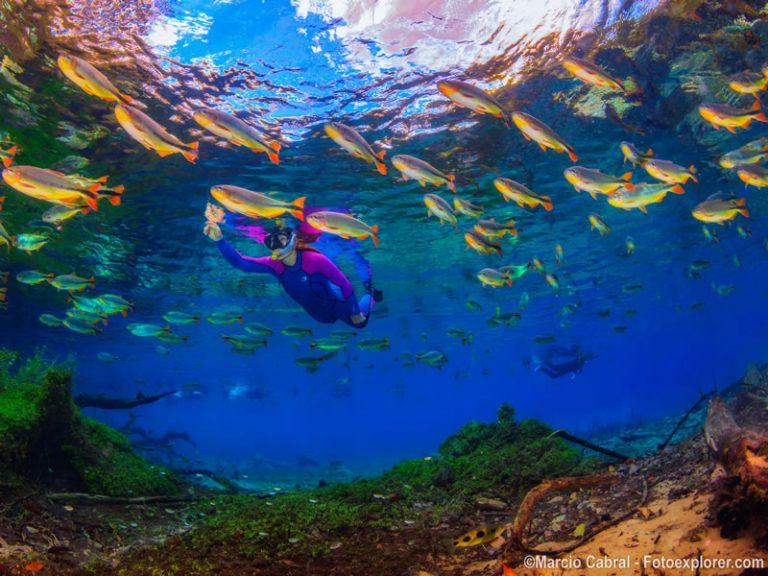 Rio da Prata - Snorkeling - By Marcio Cabral